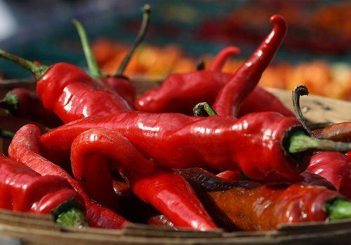 A pimenta e os níveis de picante