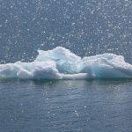 O valor da água de luxo para o meio ambiente