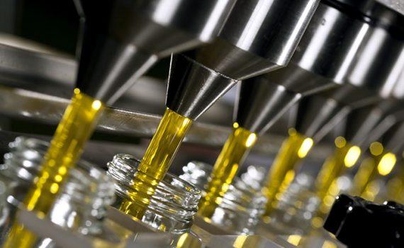 Estudo desenvolve técnica que detecta azeite adulterado a partir do DNA