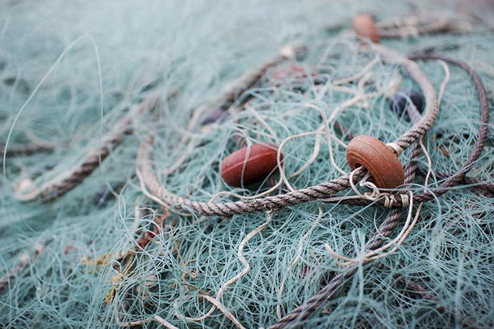 Certificado de sustentabilidade indica melhores pescas para o meio ambiente