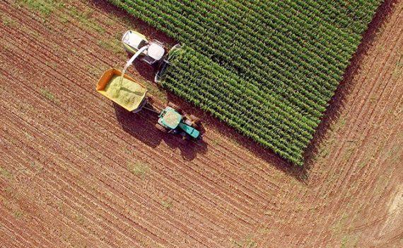 Medidas que poderiam mitigar os efeitos da agricultura na Espanha
