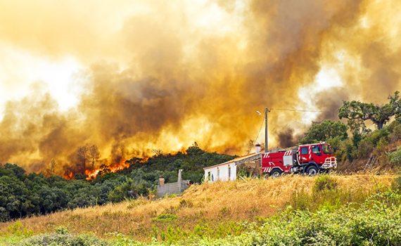 Portugal sofre as consequências dos incêndios florestais