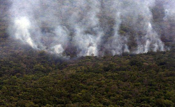 Incêndio queima 28% da maior reserva de cerrado do planeta
