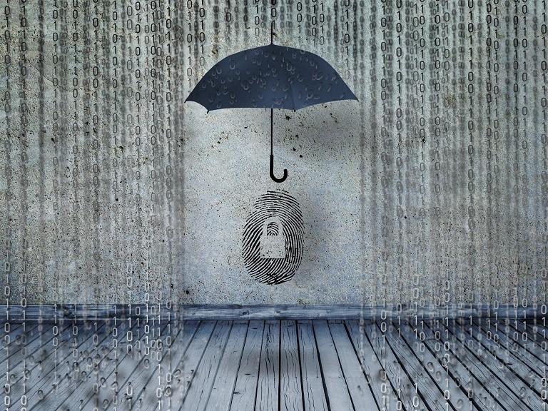 Quão seguros estão os dados do usuário na web?
