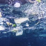 Europa dá um passo importante para a proibição de plásticos descartáveis