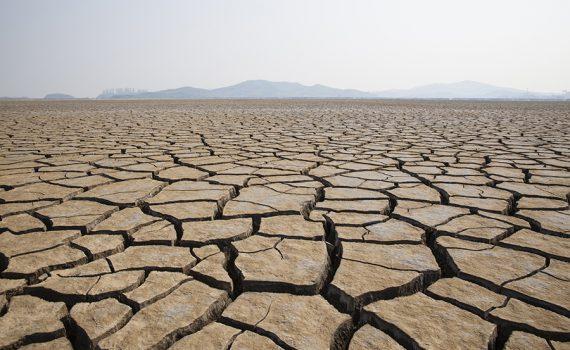 Os desafios da COP25, que acontece em Madri