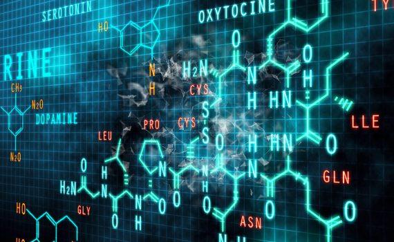 Alimentos ultraprocessados desregulam dopamina