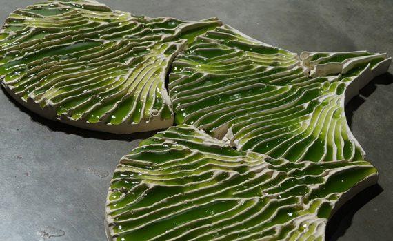 Algas servem como filtro para a purificação de água contaminada
