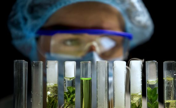 O que falta por melhorar na produção de bioetanol