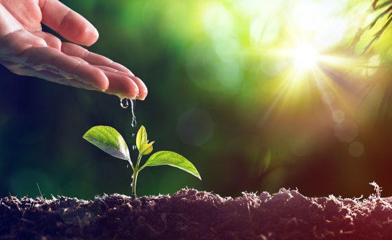 Projeto analisa abastecimento de água em zonas rurais