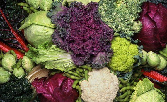 Dieta mediterrânea verde: menos carne e mais vegetais