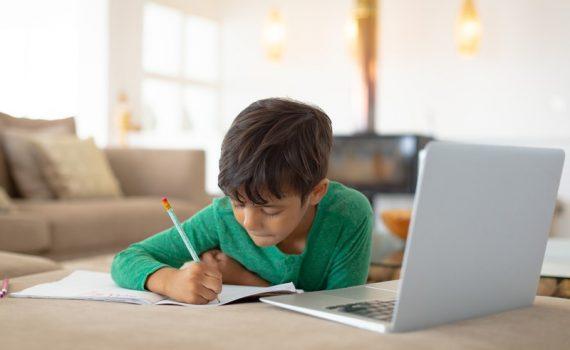 Como proteger as plataformas digitais educacionais?