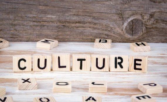 Os projetos culturais propiciados pela pandemia