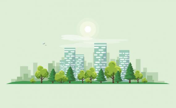 Aposta por novos modelos de planejamento urbano