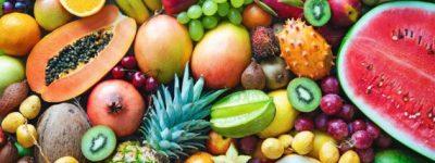 funiber-dieta-sustentavel