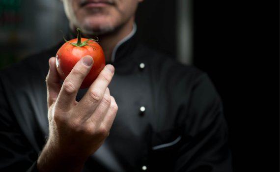 Novas variedades de tomate criadas para uma maior resistência às alterações climáticas