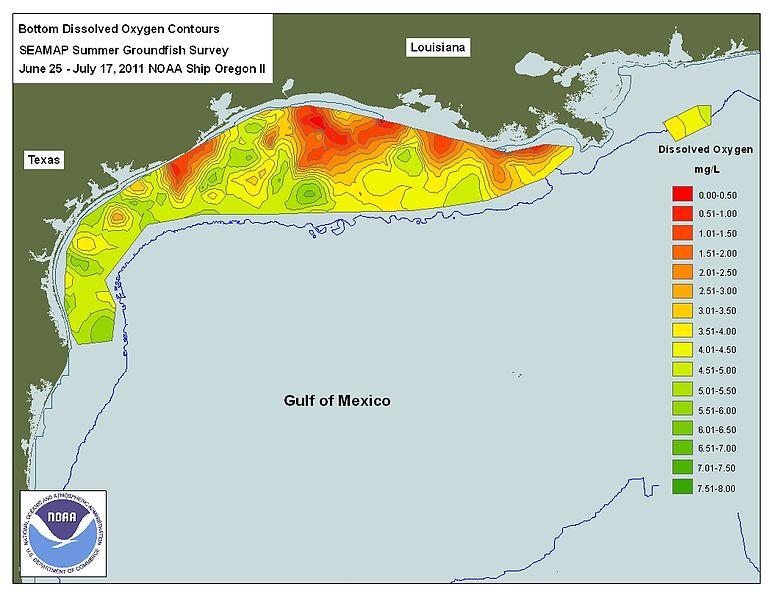 Zona muerta del Golfo de México es 17 veces más grande que la capital de  Alemania - Funiber Blogs - FUNIBER - Funiber Blogs - FUNIBER