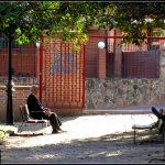 La mortalidad por Alzheimer en Brasil