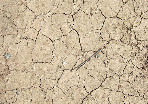 Soluciones de culturas ancestrales para la sequía