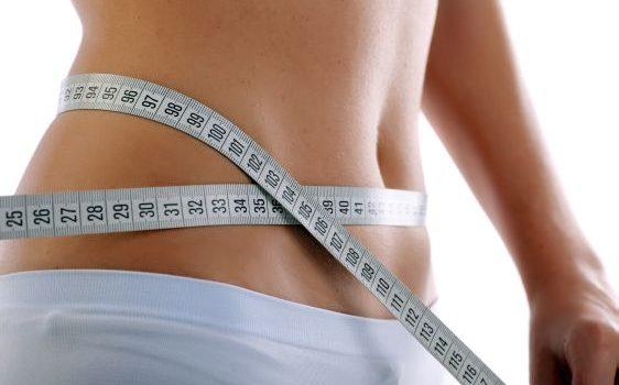 Moléculas liberadas por la grasa parda podrían dar indicios para tratamientos contra la obesidad