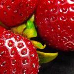 Semillas de la fresa contienen 81% de antioxidantes de la fruta