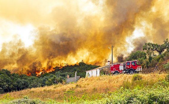 Portugal sufre las consecuencias de los incendios forestales