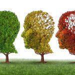 Constatan la falta de actualización de los planes españoles de demencia