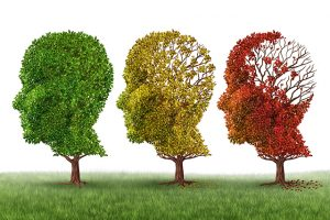 falta-actualizacion-planes-demencia