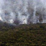 Incendio quema el 28% de la mayor reserva del bioma Cerrado de Brasil