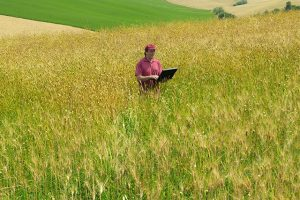 nuevas-tecnologias-mejoran-servicios-pueblos