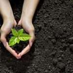 Crecen los niveles de CO2 de la atmósfera