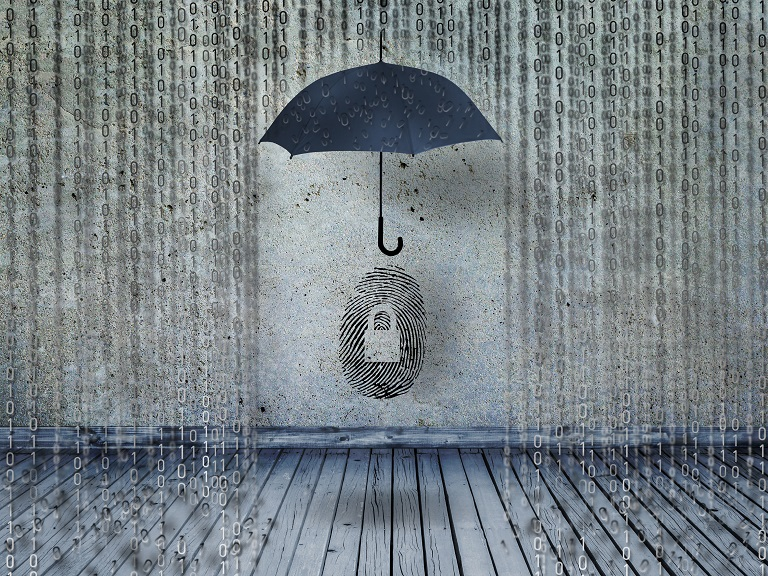 ¿Cuán seguros están los datos de los usuarios en la web?
