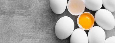 funiber-huevos
