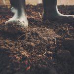 Instituto alerta sobre la salinización preocupante de los suelos colombianos