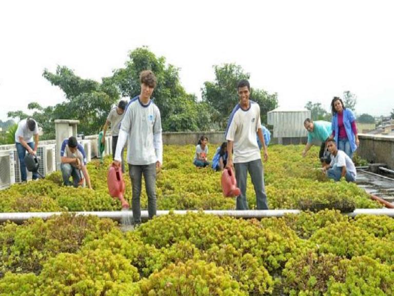 Primera escuela sostenible de América Latina