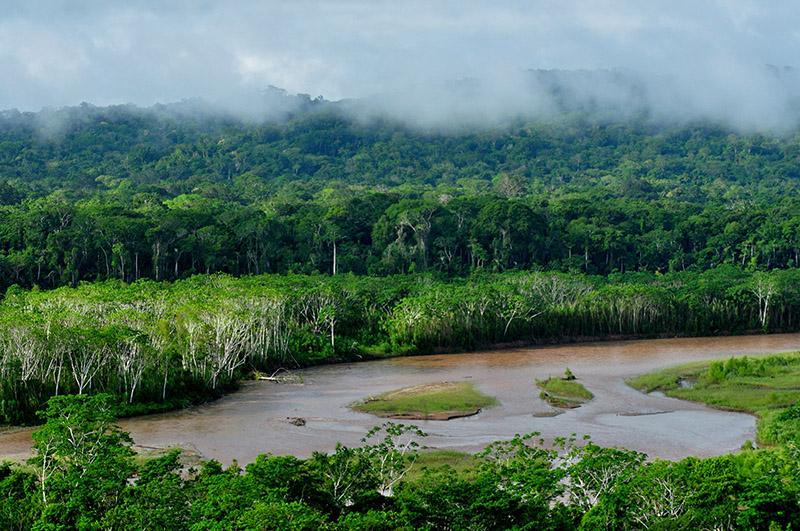 El parque con mayor biodiversidad del mundo se encuentra en Bolivia
