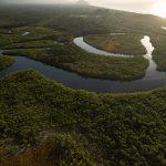 Río Bita, en Colombia, designado zona de importancia internacional