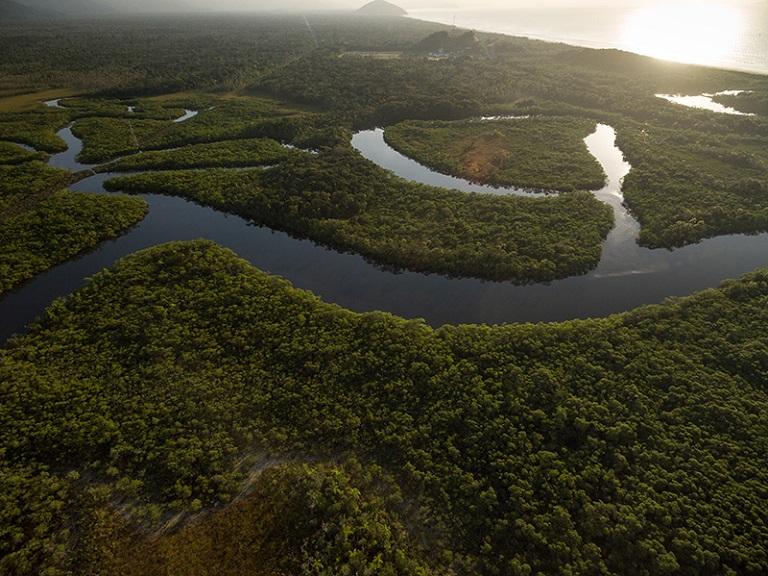 Río Bita, en Colombia, es designado zona húmeda de importancia internacional
