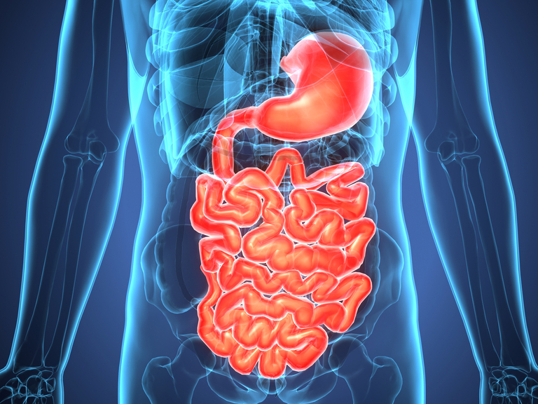 El deterioro del hígado está relacionado con el riesgo de Alzheimer