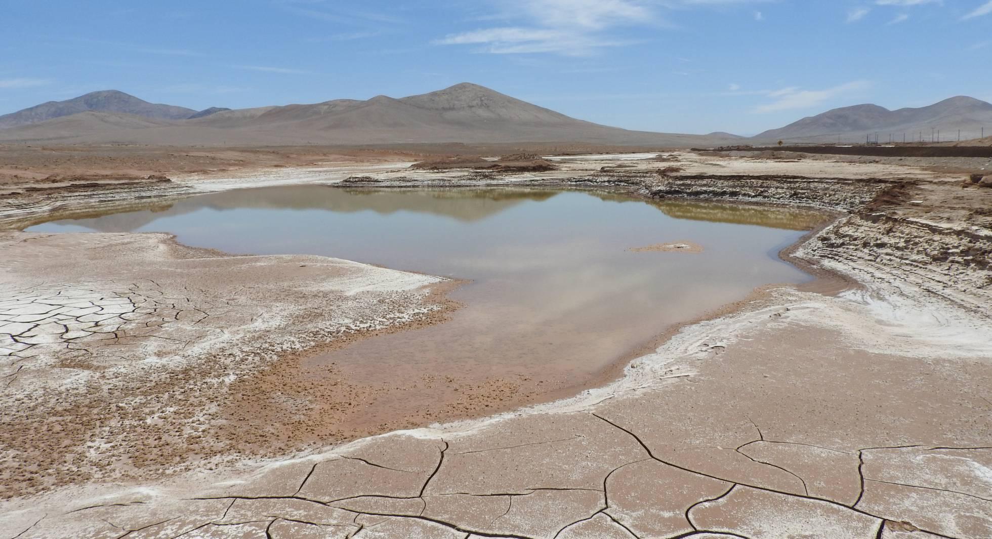 La lluvia en el corazón de Atacama provoca la muerte de microorganismos