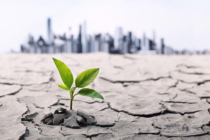 La situación de los suelos podría intensificar el cambio climático