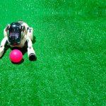 Animales robóticos, terapia para personas con demencia