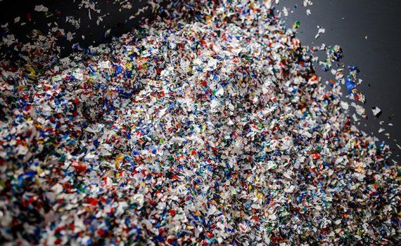 Se estima que ingerimos más de 50 mil partículas de plástico al año