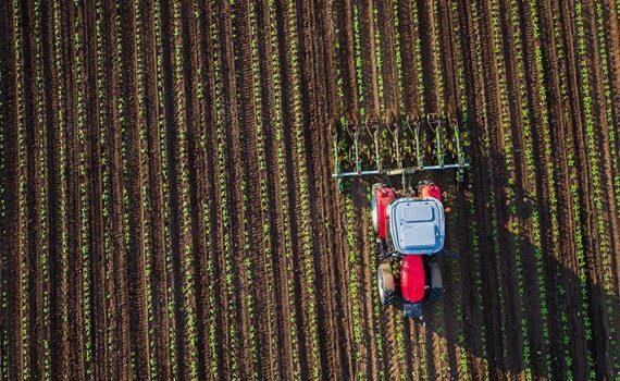 Un estudio muestra el uso de agroquímicos en los alimentos en Brasil