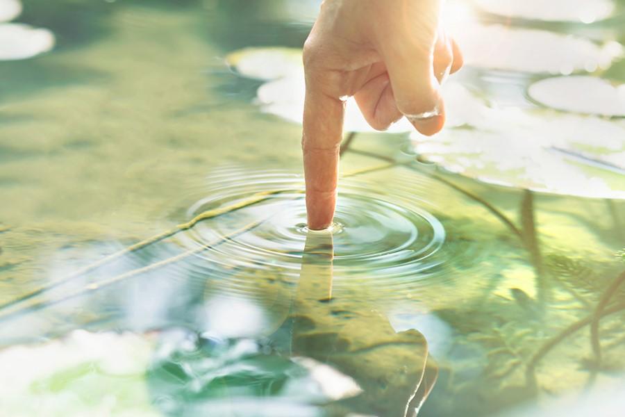 Banco Mundial advierte sobre crisis de calidad del agua