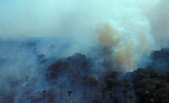 Amazonía en estado de emergencia