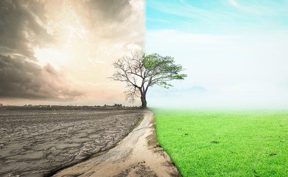 Investigadores ambientales se reúnen en un estudio climático