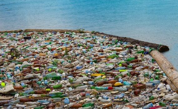 Conozca los efectos de la contaminación del plástico