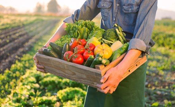 Mejorar la nutrición podría ayudar a la economía y salvar vidas