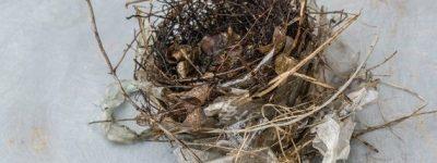 funiblog-nidos-plastico